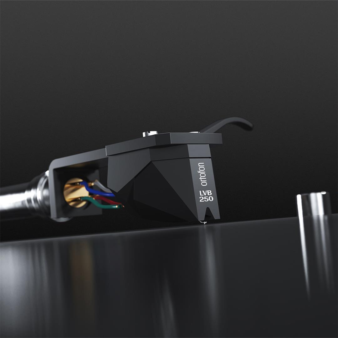 Image of 2M Black LVB 250