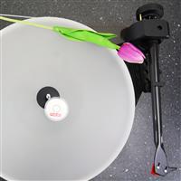 Thumbnail image of Ortofon Hi-Fi Libelle