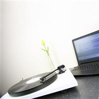 Thumbnail image of Pro-Ject Audio Systems Primary Phono USB